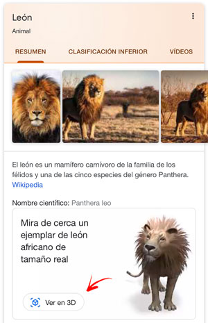 leon-3d-google